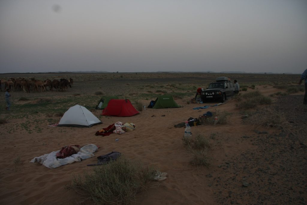 One of our Sahara desert camp in early morning, between Aousserd and Mauritania (Mohamed Amezian).