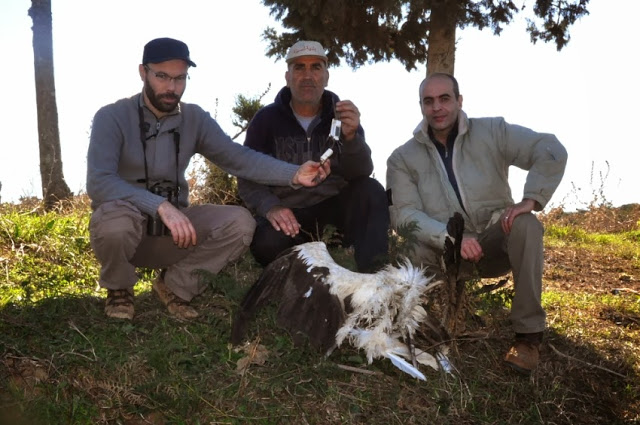 From left to right: Mohamed Amezian, Ahmed El Ketami (who saved the transmitter) & Rachid El Khamlichi