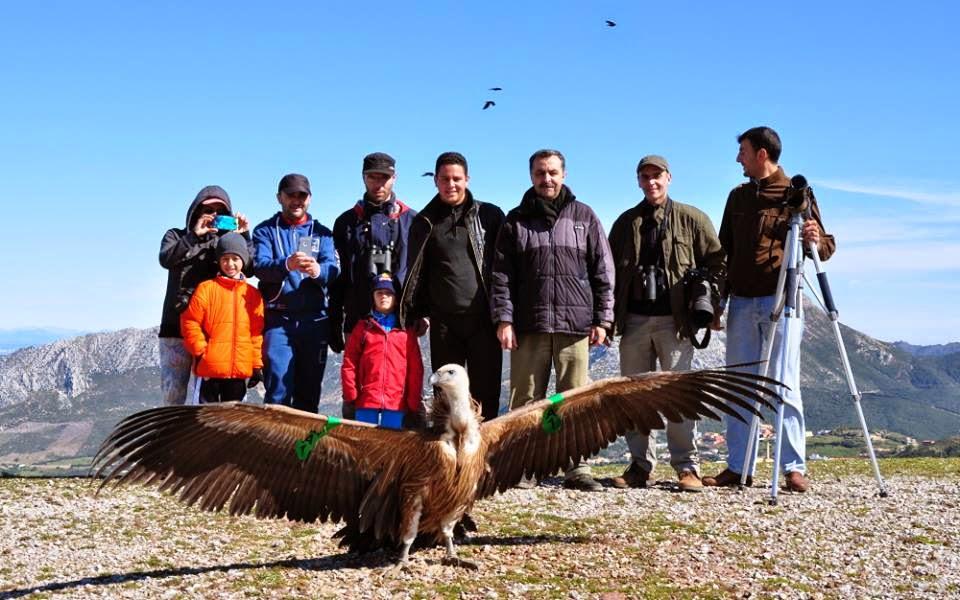الجيل الناشئ كان أيضاً حاضراً أثناء إعادة النسر الأسمر إلى البرية نواحي محمية جبل موسى، شمال المغرب