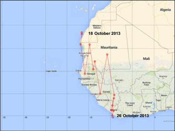 Plain Swift's autumn migration: Position of 'H001' between 18 October and 26 October 2013.