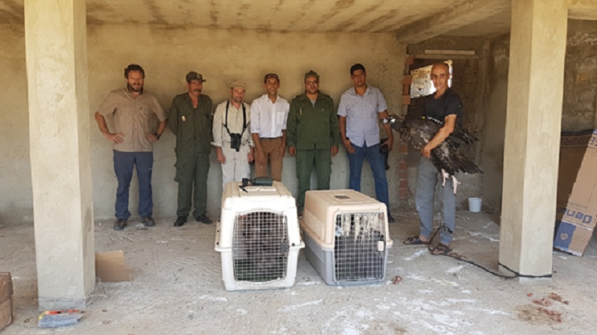 The vulture release team.