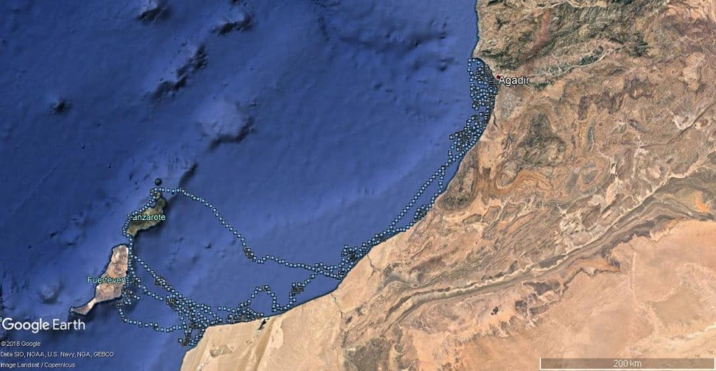 Movements of a Cape Verde Shearwater caught and GPS-tracked in Montaña Clara islet, off Lanzarote, Canary Islands (Data of the University of Barcelona's 'Seabird Ecology' group)