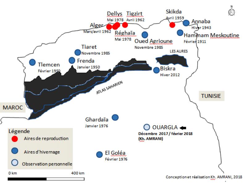 Répartition spatio-temporelle du Tarin des aulnes en Algérie / Spatio-temporal distribution of Eurasian Siskin in Algeria.