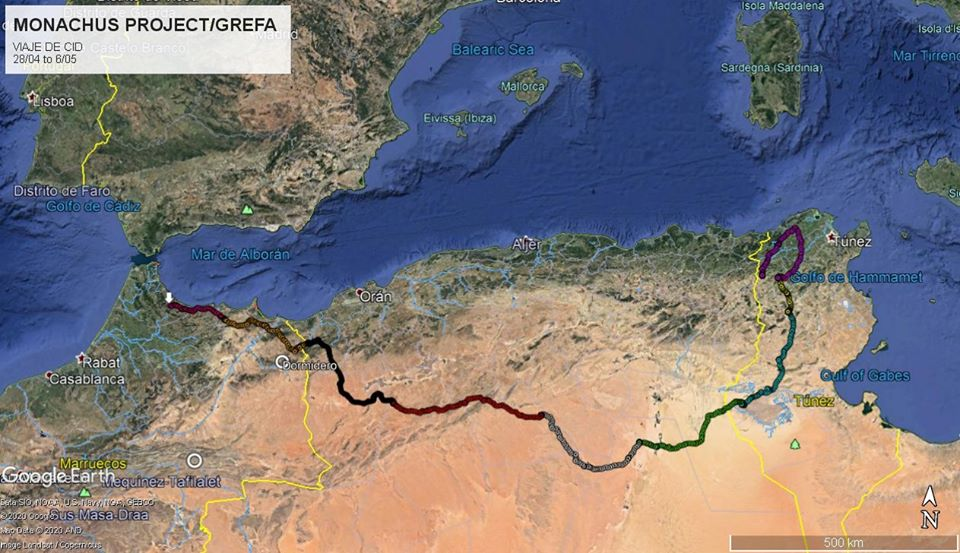 Movements of the Cinereous Vulture 'Cid' across Northwest Africa from Tunisia, Algeria to Morocco, from 8 April till 6 May.