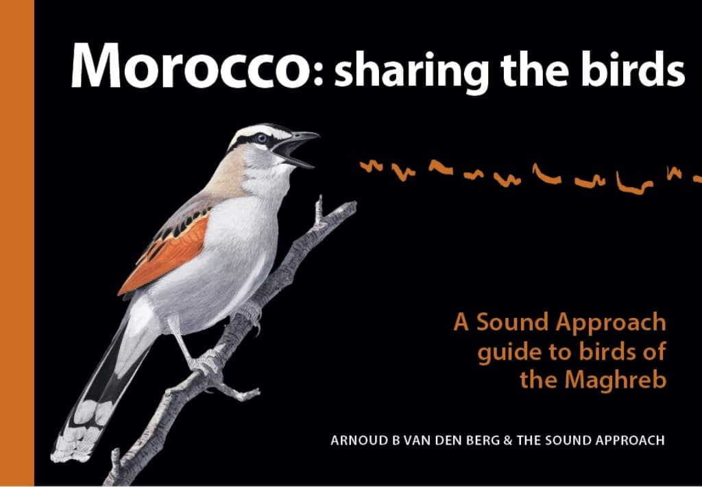 'Morocco: sharing the birds' by Arnoud B van den Berg & The Sound Approach